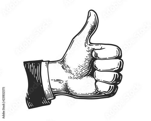 Obraz hand like engraving - fototapety do salonu