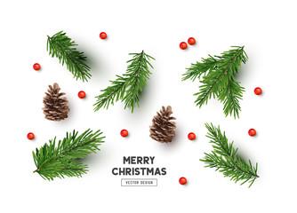 Obraz na Szkle Vector Christmas Natural Decoration Set