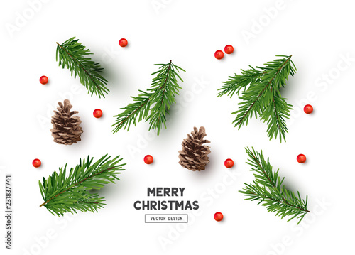 Cuadros en Lienzo Vector Christmas Natural Decoration Set