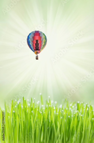 Tuinposter Asia land Colorful hot air balloon over green field