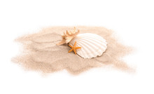 Seashell, Starfishes And Sand On White Background
