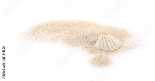 Fotografie, Obraz  Seashell and sand on white background