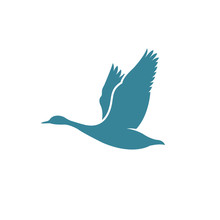 Flying Goose Logo Design Inspiration