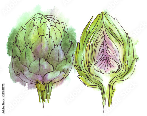 Photo watercolor artichoke for food, vegetarian and other design