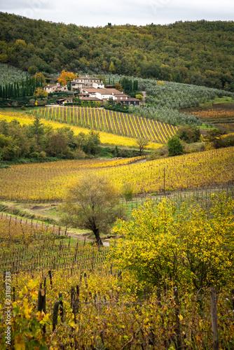 Foto  Chianti region, Tuscany
