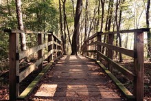 A View Down A Wooden Footbridge In Lake Benson Park In Garner, North Carolina.