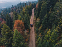 Aerial Drone View Of Black Off-road Car Riding On The Rural Dirt Road Between Pine Tree Forest On Beautiful Autumn Day. Texture. SUV.
