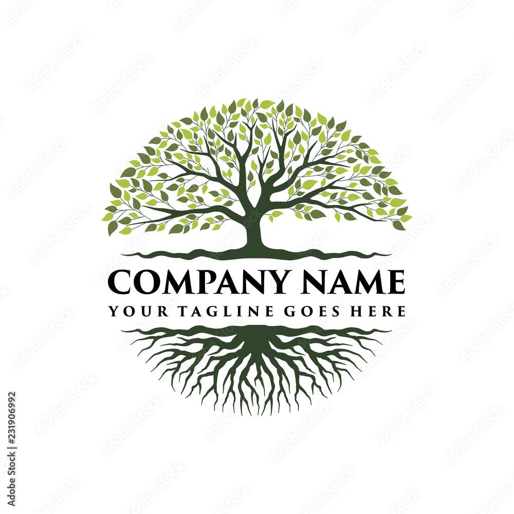 Fototapety, obrazy: Abstract vibrant tree logo design, root vector - Tree of life logo design inspiration