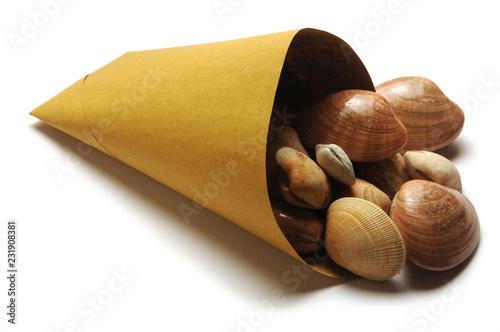 Callista chione Vongole e fasolari Smooth clam Fasolara ft81029114 Fasolaro صدف هموار Palourde