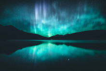 Northern Lights In The Canadia...