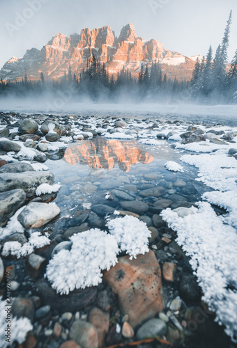 Poster Gris Freezing morning by the Bow River, Canadian Rockies