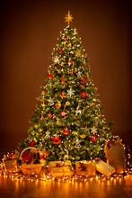 Christmas Tree Lighting In Nig...