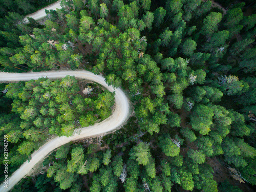 In de dag Noord Europa Aerial view from drone, of curved mountain road between woods.