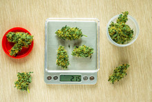 Cones Of Cannabis Flowers On The Scales. Measuring Of Buds Of Medical Marijuana. Weighing Marijuana For Sale. The Legalization Of Soft Drugs. Dealer Sells Drug Bag. Black Market Of Drugs Trade.