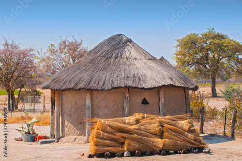 Fotografie, Obraz  Typical thatched roof African round hut in Botswana.