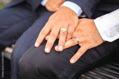 Fotografie, Obraz  A hand with ring of gay couple in the park on their wedding day