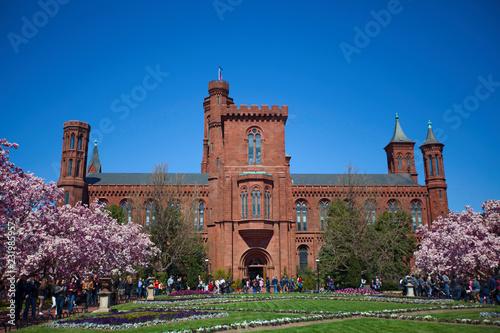 Fotografie, Obraz  Smithsonian Institution Building