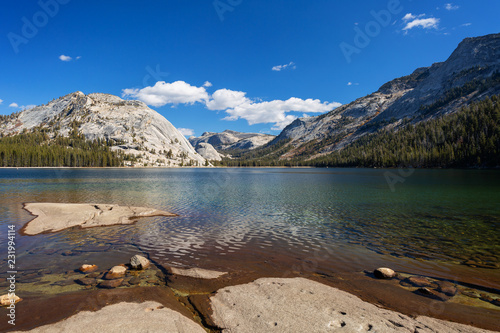 Foto op Aluminium Meer / Vijver Sunny day at Tenaya Lake in Yosemite National Park