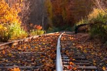 Colorful Autumn Landscape Beau...