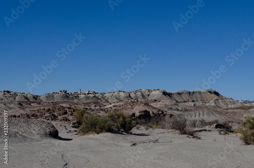 Landscape of the Valley of the Moon, San Juan, Argentina