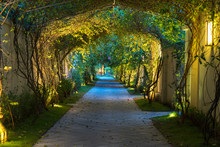 Garden Path In Resort With Warm Light And Trees On Side At Evening, Garden Decoration.