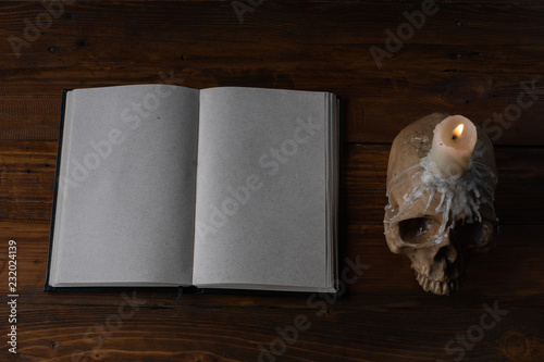Fotografie, Tablou  Skull and notebook