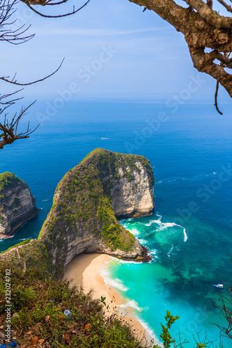 Staande foto Asia land Manta Bay or Kelingking Beach on Nusa Penida Island, Bali, Indonesia
