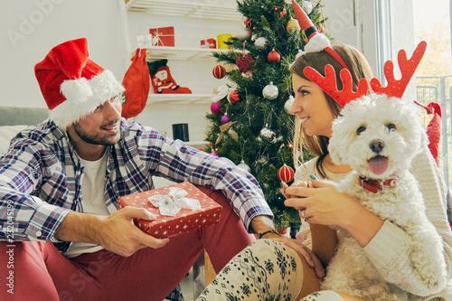 Fotografia  Couple with dog sitting near Christmas tree