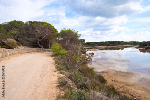 Foto op Canvas Zalm Landscape with rural road