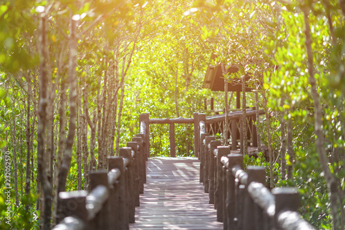 Fototapety, obrazy: The walkway at the wood bridge in the forest.selective focus.