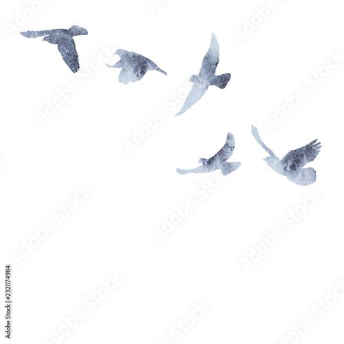 Cuadros en Lienzo isolated flock of birds flying, gray watercolor silhouette
