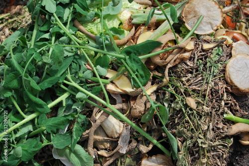 Kompost Im Garten Buy This Stock Photo And Explore Similar Images