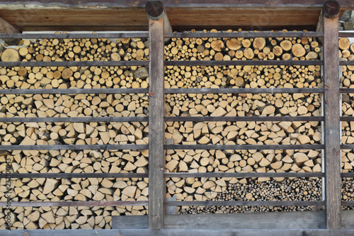 A batch of piled yellow and brown round firewood cut in regular logs and stored in woodshed
