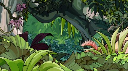 kreskówka las tropikalny z różnorodnością bujnej roślinności
