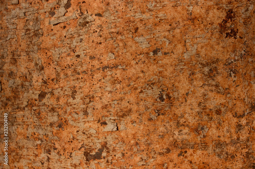 Fototapety, obrazy: Beautiful rust texture as metal plate background