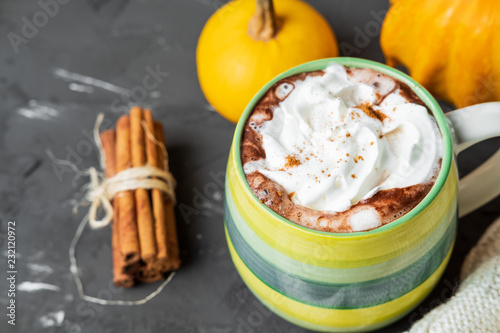 Spicy pumpkin latte with cinnamon and autumn leaves on a gray background