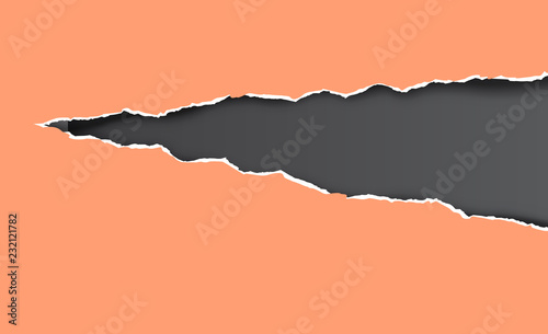 Torn and ripped sheet of paper. Vector illustration. Fotobehang