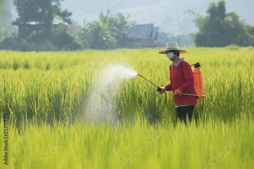 Farmers are spraying chemicals on the farm Agriculture uses
