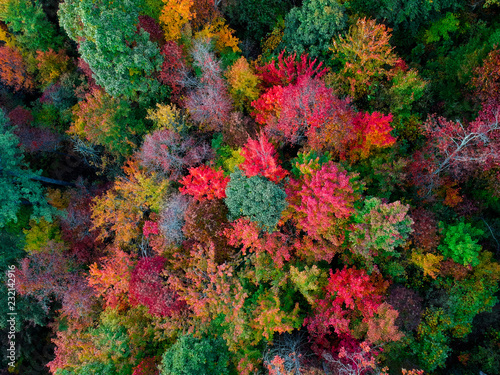 Aerial Drone view of overhead colorful fall / autumn leaf foliage near Asheville, North Carolina.Vibrant red, yellow, teal, orange colors of the Hardwood trees in the Appalachian Mountains.