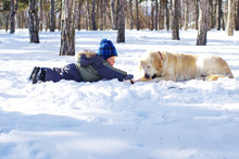 Toddler Boy Playing With A Dog In The Snow