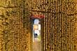 canvas print picture - Combine harvester
