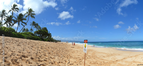 Perfect beach Hawaii