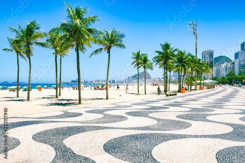 Bright morning view of the curving boardwalk tile pattern with palm trees at Cop Wallpaper Mural
