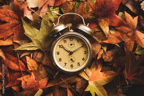Fotografía  Autumn season time