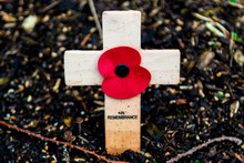 Remberance Day Cross With Poppy To Mark Anniversary