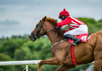 Close-up on single race horse and jockey racing