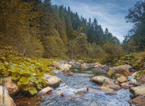 Papiers peints Riviere River in mountains with rocks, yellow grass on riverside. Autumn mountains landscape, sky, clouds. Idea for outdoor activities, travel .