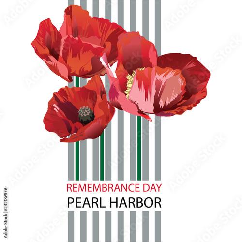 Obraz na plátně Vector illustration of a Banner for Pearl Harbor Remembrance Day.