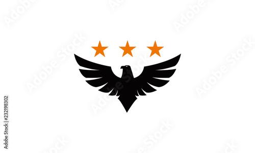 Obraz na płótnie brand eagle