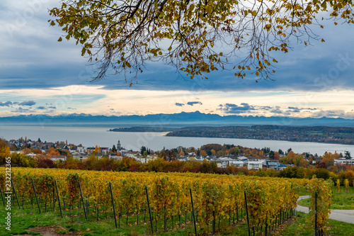 Herbst Landschaft Bodensee Panorama Blick Buy This Stock Photo And